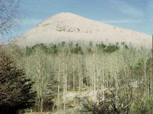 Winter at Tiger Mountain
